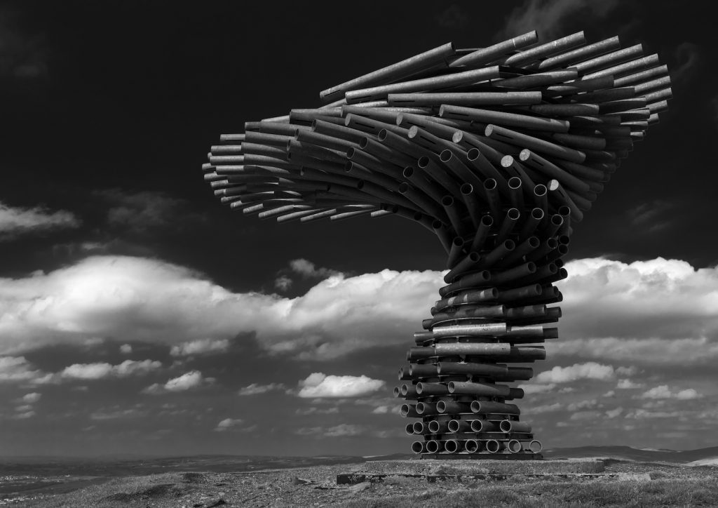 highly commended image The Singing Ringing Tree